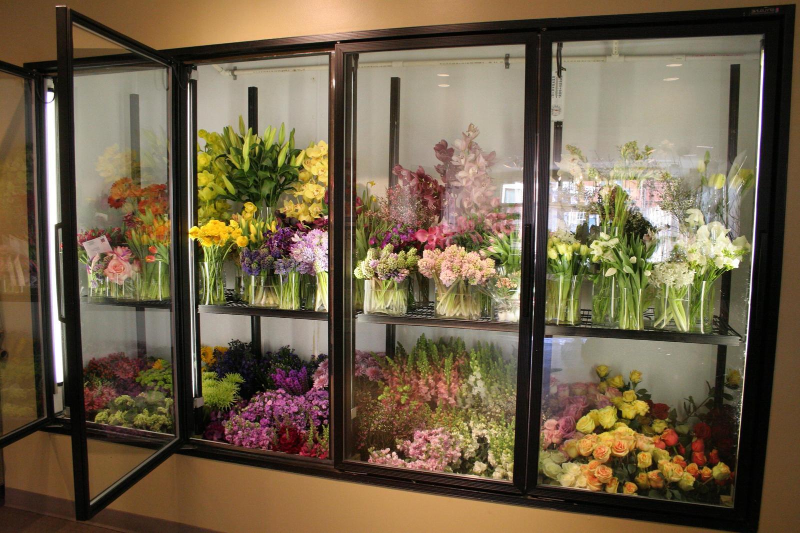 Как выбрать холодильник для цветов